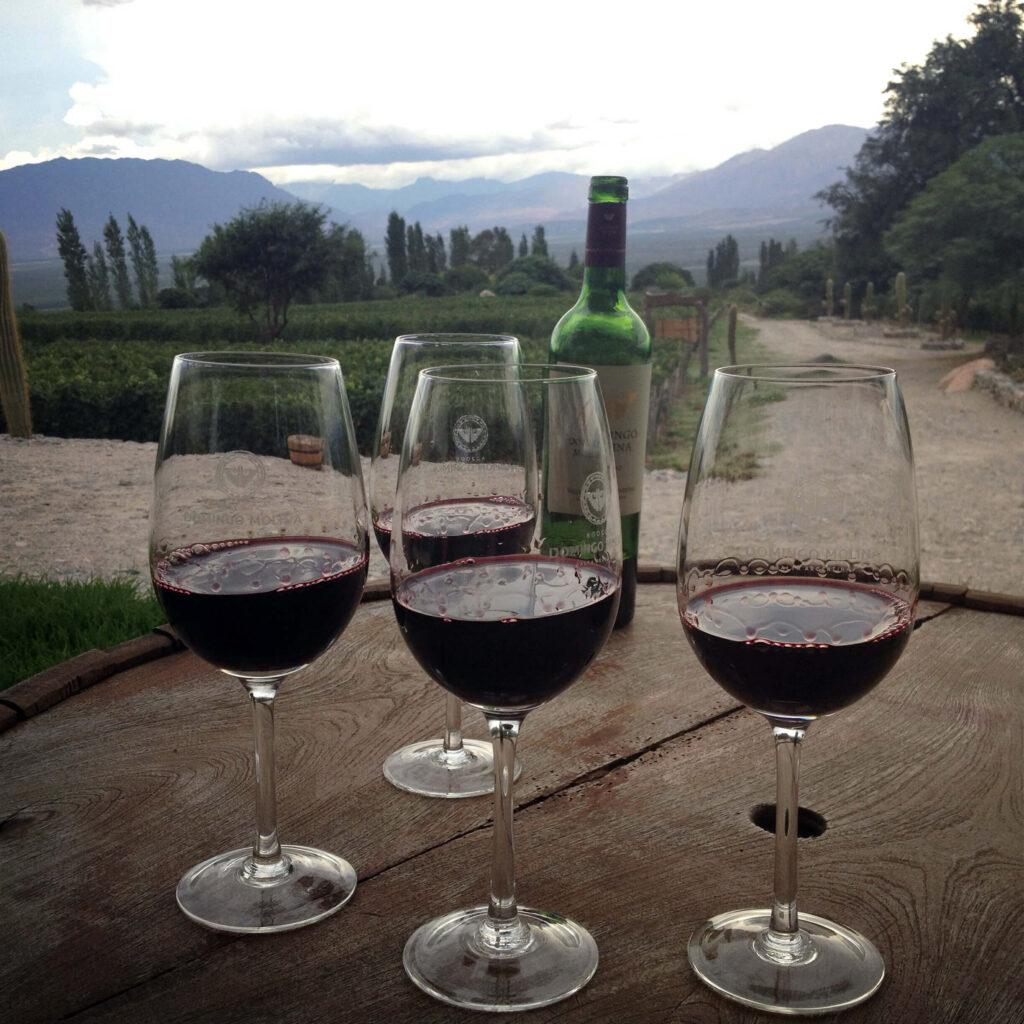 Fuqua Exchange Students enjoying wine in Argentina