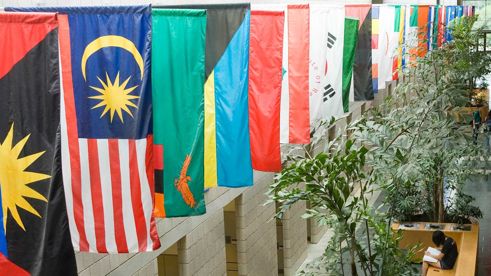 the dozens of national and other flags in the halls symbolize the diversity at Fuqua